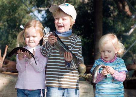 Rhyll-Fishing-Park-00711