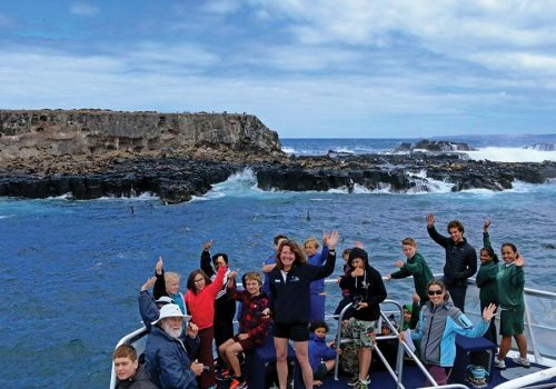 School Groups - Seal Watching